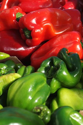 Capsicums (sweet peppers)
