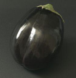 Aub0042